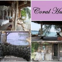 Coral Hut