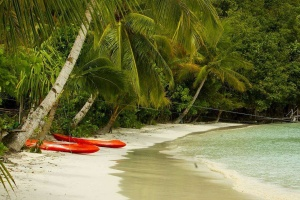 Raja-Ampat-Doberai-Eco-Resort-16