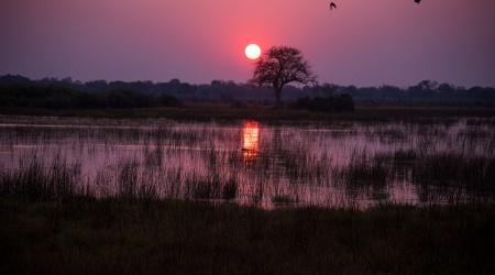 botswana-1022405_960_720