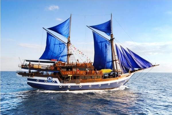 ship25
